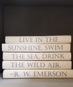 Emerson Quote Set of 5 Books
